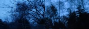 Alberi blu mini Carla BB