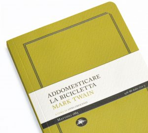 addomesticare-la-bicicletta-300x270.jpg