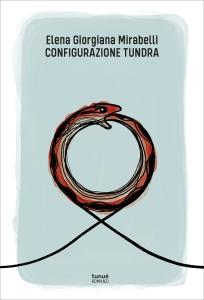 tundra_cover